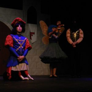 center-stage-players-photos-naperville-theater-kids - 30